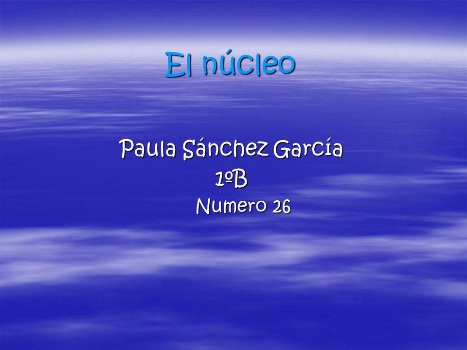 El núcleo Paula Sánchez García 1ºB Numero 26