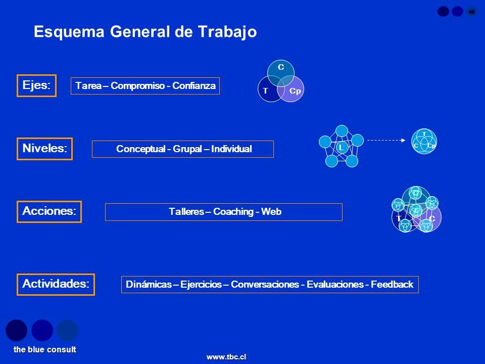 the blue consult www.tbc.cl 40 Esquema General de Trabajo T C Cp Ejes: Tarea – Compromiso - Confianza Niveles: Conceptual - Grupal – Individual Activi