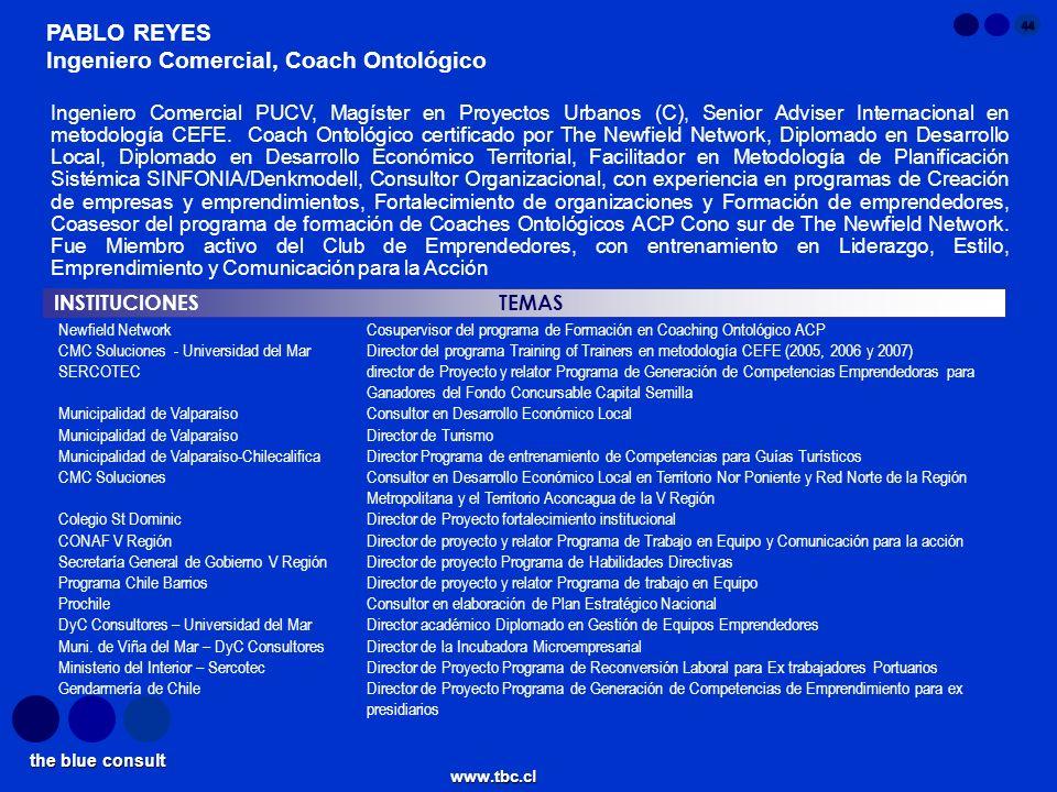 the blue consult www.tbc.cl 44 INSTITUCIONES TEMAS PABLO REYES Ingeniero Comercial, Coach Ontológico Newfield NetworkCosupervisor del programa de Form