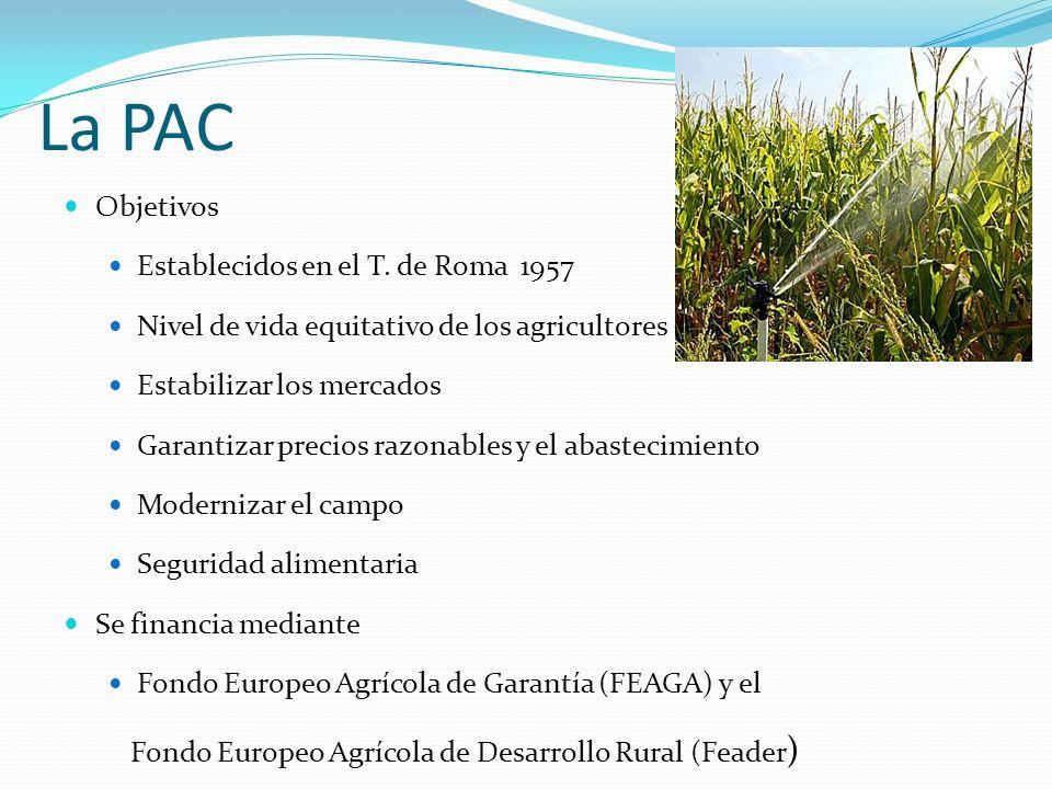 La PAC Objetivos Establecidos en el T. de Roma 1957 Nivel de vida equitativo de los agricultores Estabilizar los mercados Garantizar precios razonable