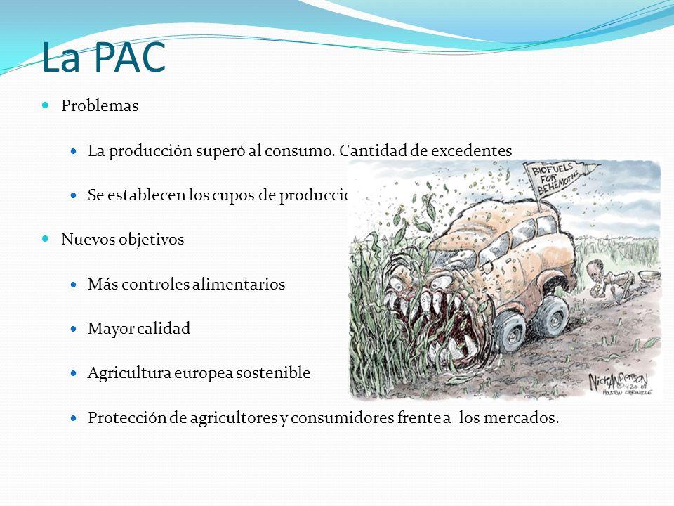 La PAC Problemas La producción superó al consumo. Cantidad de excedentes Se establecen los cupos de producción Nuevos objetivos Más controles alimenta