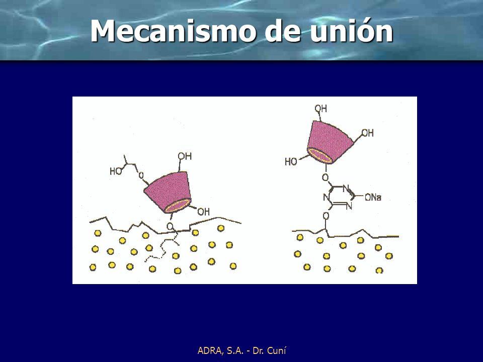 ADRA, S.A. - Dr. Cuní Ciclodextrinas reactivas Mecanismo de unión – fijación alcalina Hace 10 años las ciclodextrinas eran muy caras y tenían mala sol