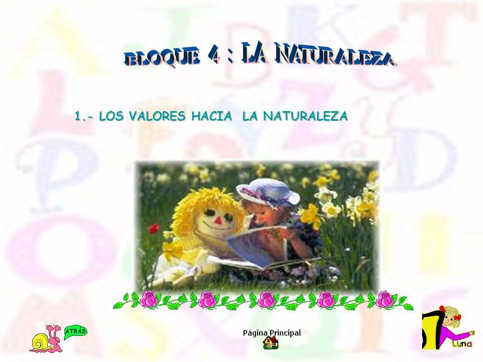 1.- LOS VALORES HACIA LA NATURALEZA