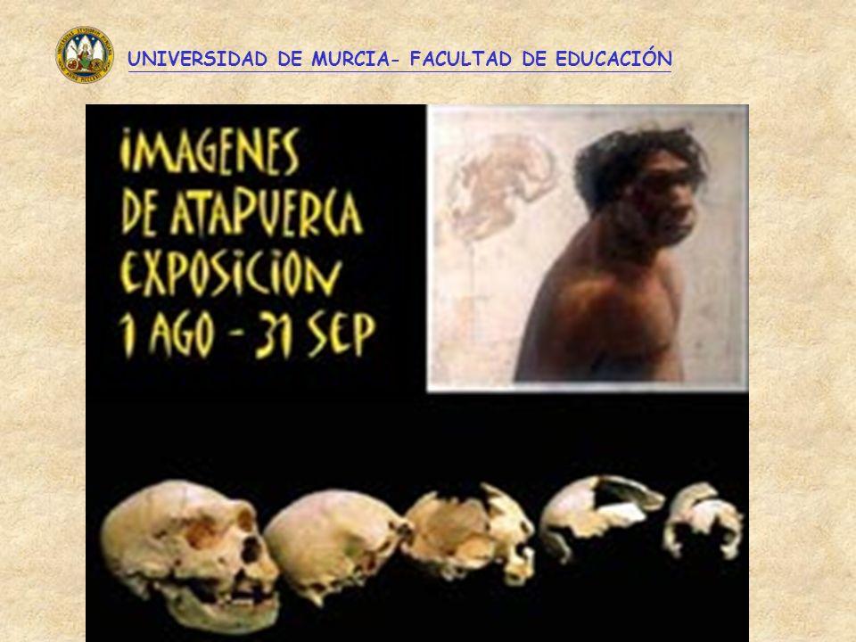 UNIVERSIDAD DE MURCIA- FACULTAD DE EDUCACIÓN