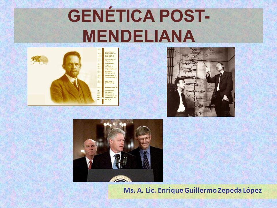 GENÉTICA POST- MENDELIANA Ms. A. Lic. Enrique Guillermo Zepeda López