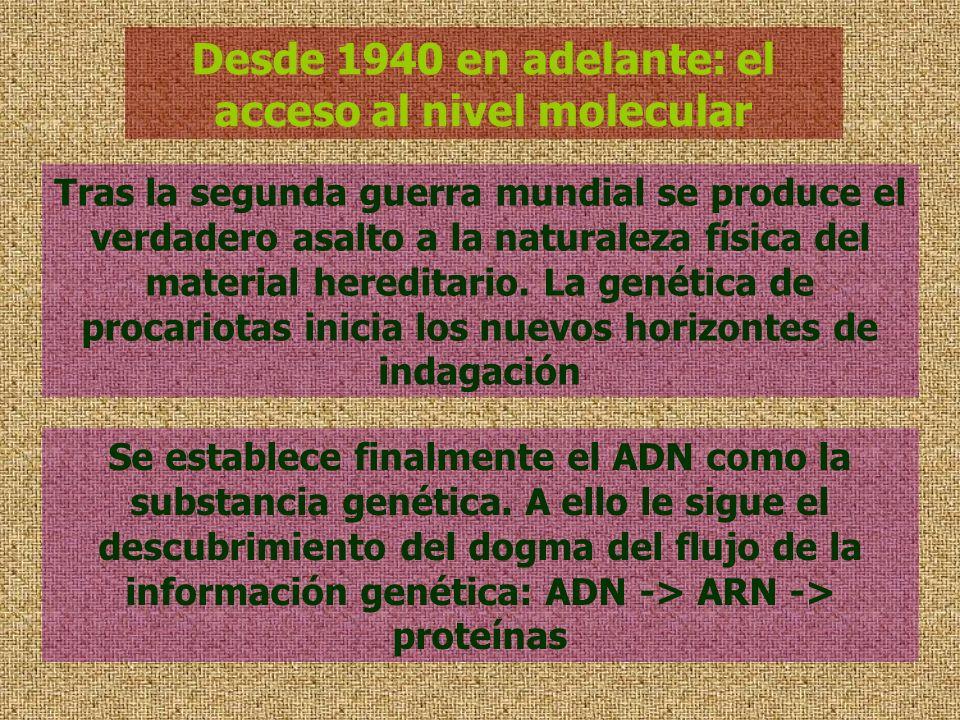 Desde 1940 en adelante: el acceso al nivel molecular Tras la segunda guerra mundial se produce el verdadero asalto a la naturaleza física del material
