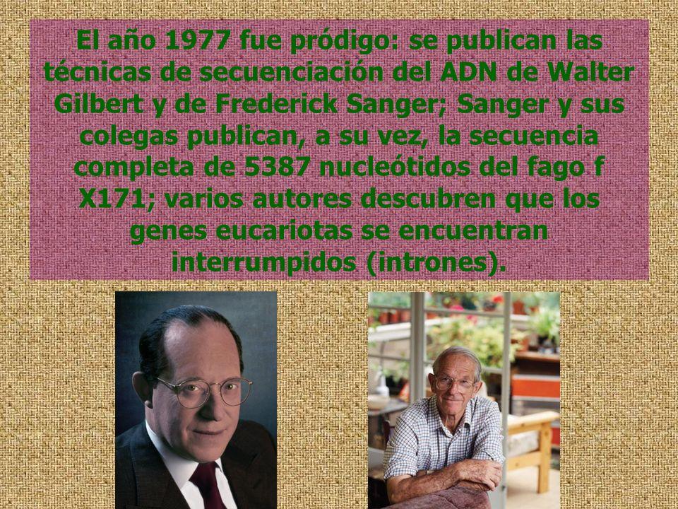 El año 1977 fue pródigo: se publican las técnicas de secuenciación del ADN de Walter Gilbert y de Frederick Sanger; Sanger y sus colegas publican, a s