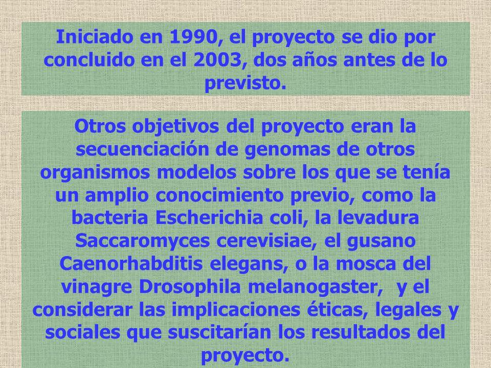 Iniciado en 1990, el proyecto se dio por concluido en el 2003, dos años antes de lo previsto. Otros objetivos del proyecto eran la secuenciación de ge