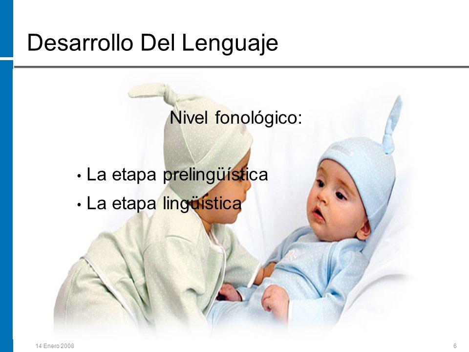 14 Enero 20086 Desarrollo Del Lenguaje Nivel fonológico: La etapa prelingüística La etapa lingüística