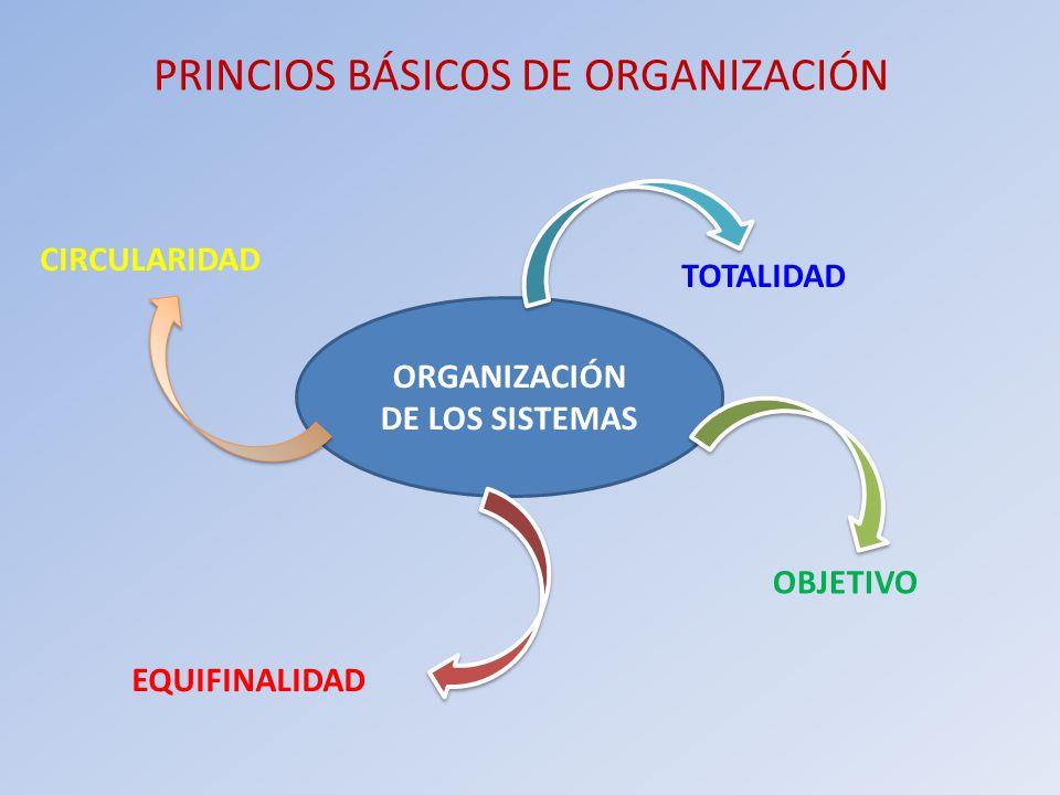 PRINCIOS BÁSICOS DE ORGANIZACIÓN ORGANIZACIÓN DE LOS SISTEMAS TOTALIDAD OBJETIVO EQUIFINALIDAD CIRCULARIDAD