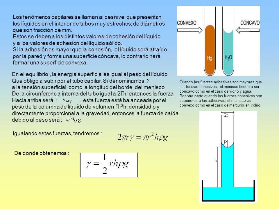 Cuando las fuerzas adhesivas son mayores que las fuerzas cohesivas, el menisco tiende a ser cóncavo como en el caso de vidrio y agua. Por otra parte c