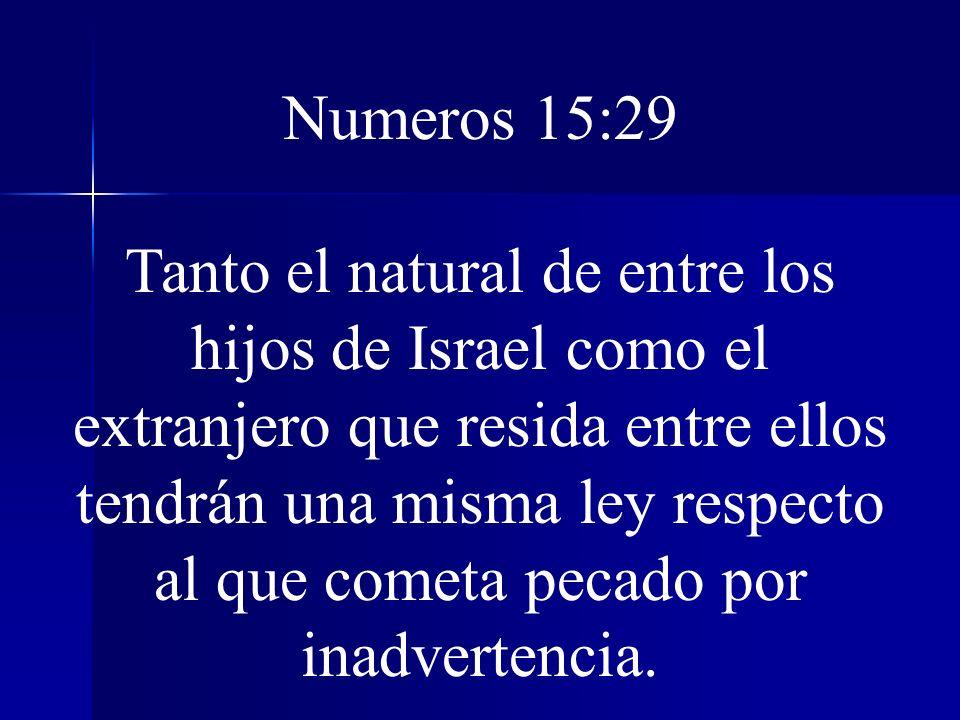 Numeros 15:29 Tanto el natural de entre los hijos de Israel como el extranjero que resida entre ellos tendrán una misma ley respecto al que cometa pec