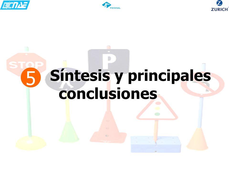 5 Síntesis y principales conclusiones