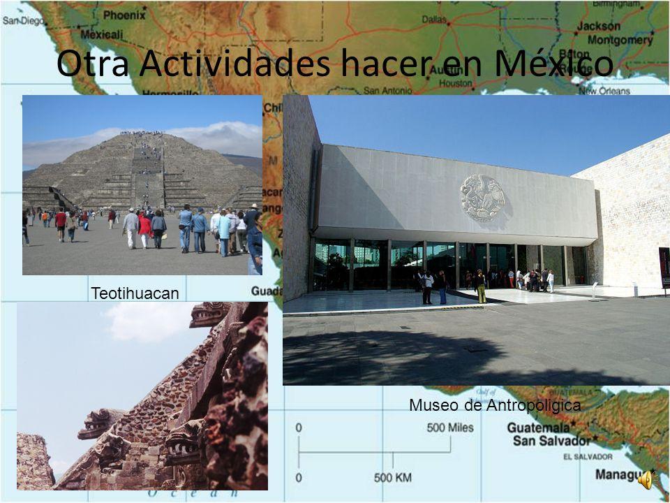 Actividades de La Ciudad de México El Cathedral Metropolitan La Palacio de Bellas Artes Zocaló