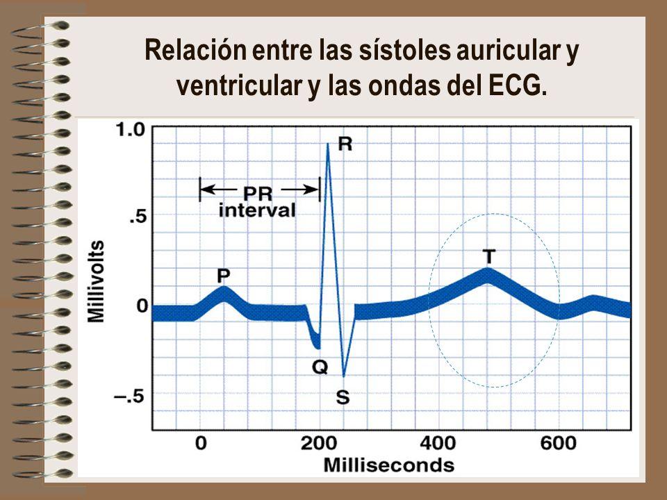 Relación entre las sístoles auricular y ventricular y las ondas del ECG.