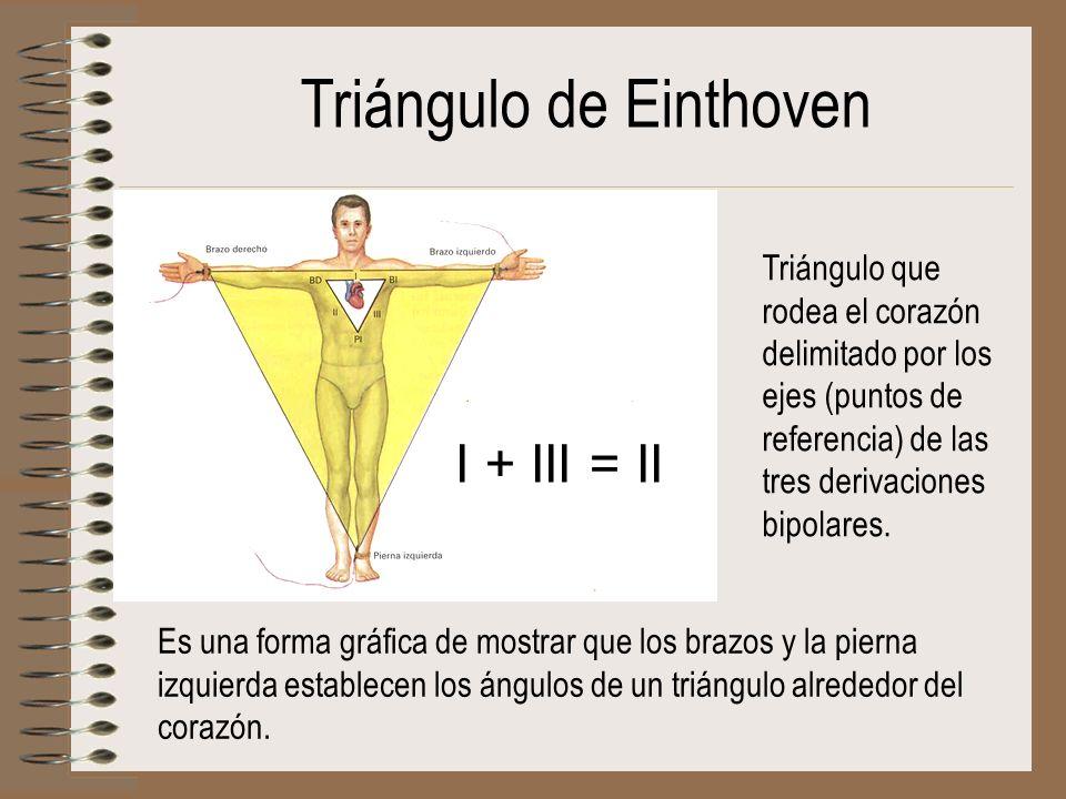 Triángulo de Einthoven I + III = II Triángulo que rodea el corazón delimitado por los ejes (puntos de referencia) de las tres derivaciones bipolares.