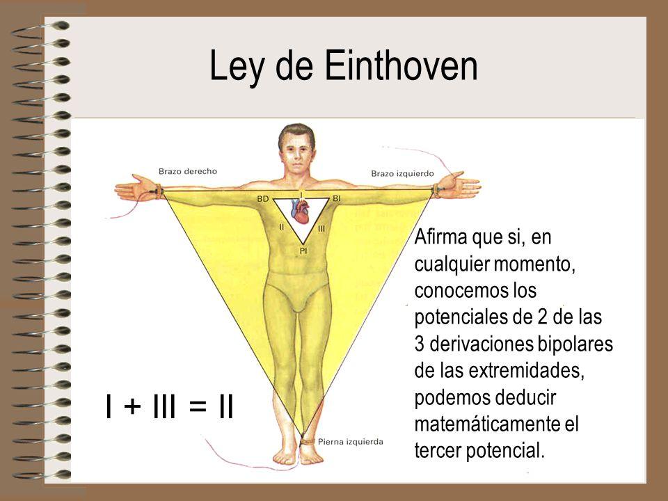 Ley de Einthoven I + III = II Afirma que si, en cualquier momento, conocemos los potenciales de 2 de las 3 derivaciones bipolares de las extremidades,