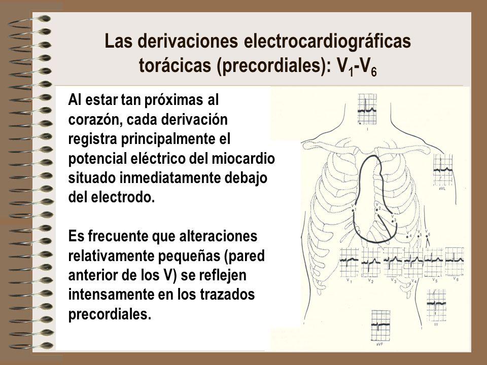 Las derivaciones electrocardiográficas torácicas (precordiales): V 1 -V 6 Al estar tan próximas al corazón, cada derivación registra principalmente el