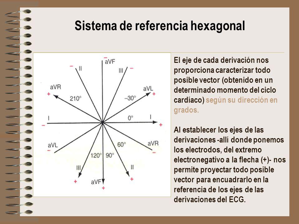 Sistema de referencia hexagonal El eje de cada derivación nos proporciona caracterizar todo posible vector (obtenido en un determinado momento del cic