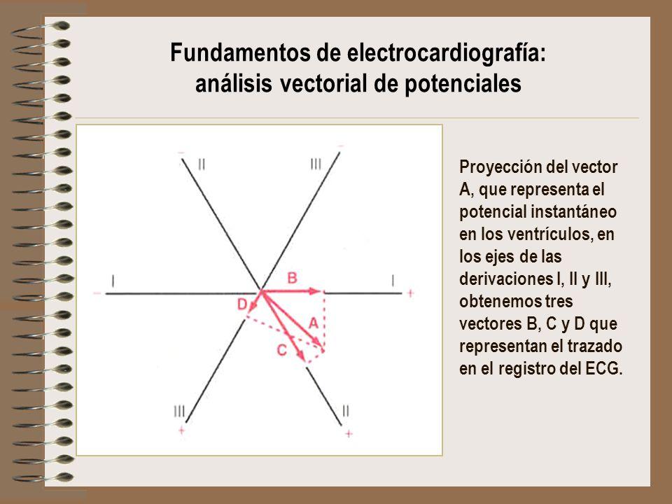 Proyección del vector A, que representa el potencial instantáneo en los ventrículos, en los ejes de las derivaciones I, II y III, obtenemos tres vecto
