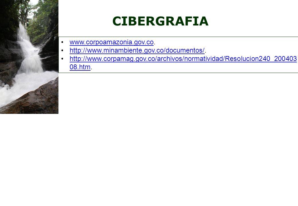 CIBERGRAFIA www.corpoamazonia.gov.co.www.corpoamazonia.gov.co http://www.minambiente.gov.co/documentos/.http://www.minambiente.gov.co/documentos/ http