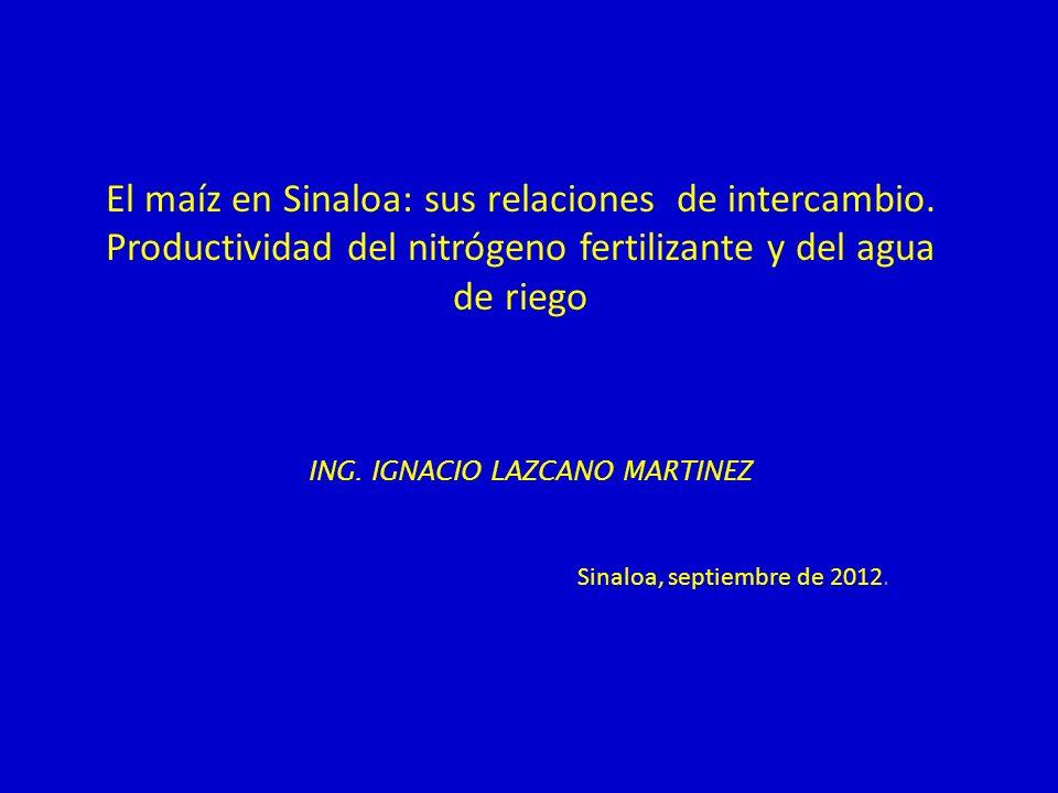 El maíz en Sinaloa: sus relaciones de intercambio. Productividad del nitrógeno fertilizante y del agua de riego ING. IGNACIO LAZCANO MARTINEZ Sinaloa,
