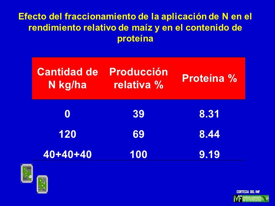 Cantidad de N kg/ha Producción relativa % Proteína % 0398.31 120698.44 40+40+401009.19 Efecto del fraccionamiento de la aplicación de N en el rendimie