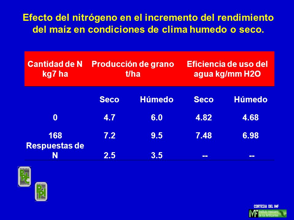 Cantidad de N kg7 ha Producción de grano t/ha Eficiencia de uso del agua kg/mm H2O SecoHúmedoSecoHúmedo 04.76.04.824.68 1687.29.57.486.98 Respuestas d