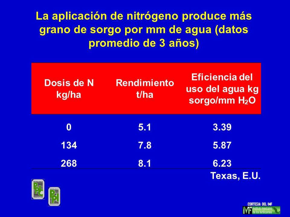 Dosis de N kg/ha Rendimiento t/ha Eficiencia del uso del agua kg sorgo/mm H 2 O 05.13.39 1347.85.87 2688.16.23 Texas, E.U. La aplicación de nitrógeno