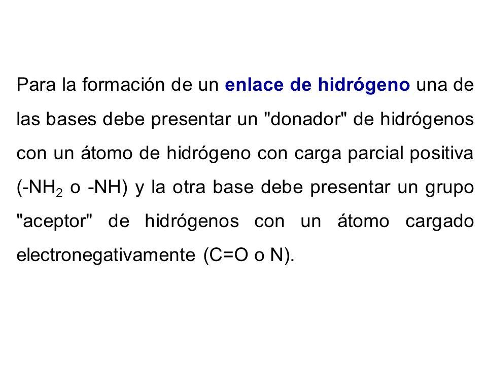 Para la formación de un enlace de hidrógeno una de las bases debe presentar un