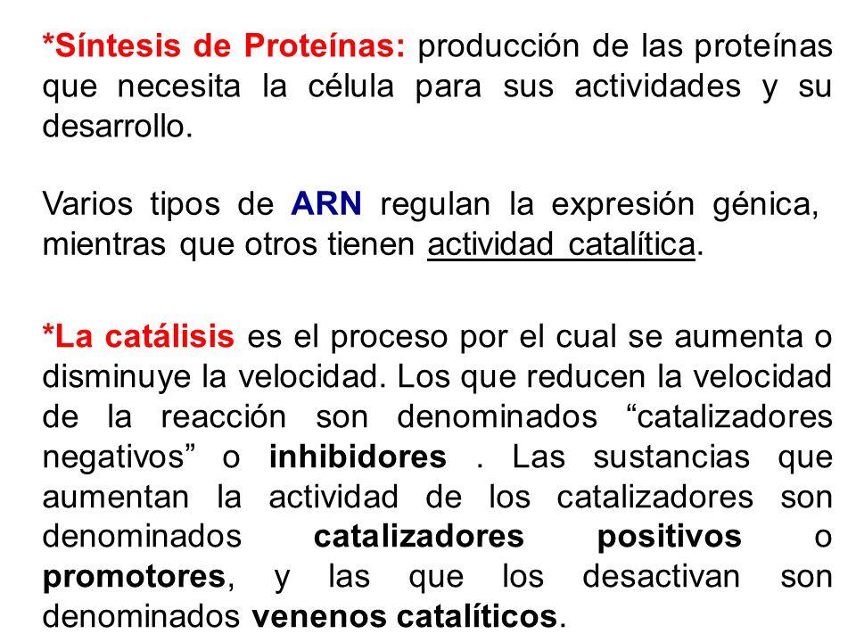 *Síntesis de Proteínas: producción de las proteínas que necesita la célula para sus actividades y su desarrollo. Varios tipos de ARN regulan la expres
