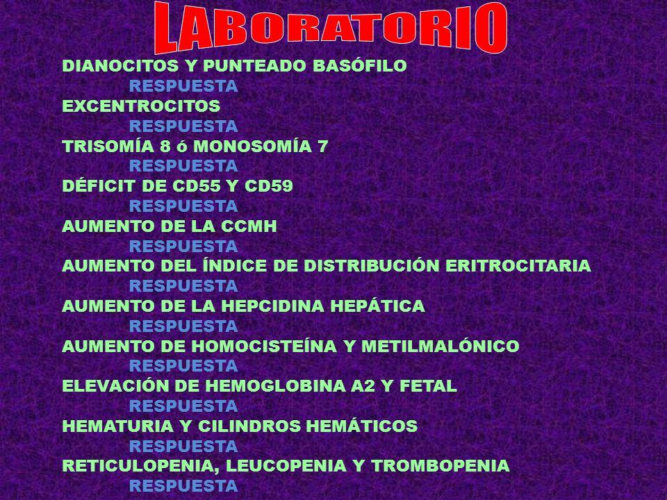 MACROCITOSIS + TÚNEL CARPO + ESTREÑIMIENTO RESPUESTA DACRIOCITOS + DOLOR DE CADERA + AUMENTO FOSFATASA RESPUESTA NORMOCÍTICA + DIPLOPIA + ANTICUERPOS ANTI MuSK RESPUESTA NORMOCÍTICA + QT LARGO + TETANIA + HIPOFOSFATEMIA RESPUESTA ESPLENOMEGALIA + LEUCOPENIA + TROMBOPENIA + FIEBRE + HIPERGAMMAGLOBULINEMIA RESPUESTA DOLOR ABDOMINAL + FIEBRE + DIARREA + MEGALOBLASTOSIS + EOSINOFILIA RESPUESTA MICROCÍTICA EN PACIENTE TUBERCULOSO RESPUESTA CON ICTERICIA DURANTE LA ACTUAL EPIDEMIA DE SARAMPIÓN RESPUESTA CON AUMENTO RETICULOCITOS EN PACIENTE CON CIRROSIS RESPUESTA CON HAPTOGLOBIA INDETECTABLE EN PACIENTE CON LLC RESPUESTA