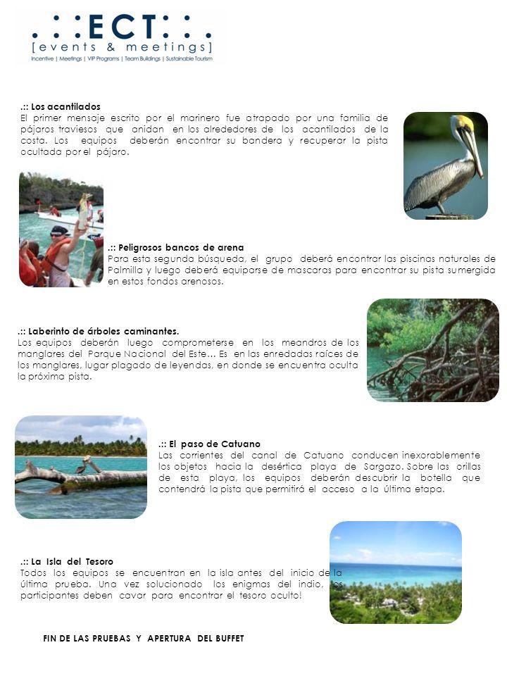 FIN DE LAS PRUEBAS Y APERTURA DEL BUFFET.:: Los acantilados El primer mensaje escrito por el marinero fue atrapado por una familia de pájaros traviesos que anidan en los alrededores de los acantilados de la costa.