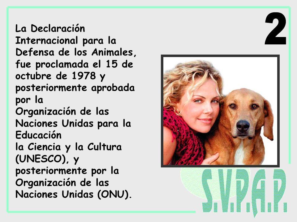 La Declaración Internacional para la Defensa de los Animales, fue proclamada el 15 de octubre de 1978 y posteriormente aprobada por la Organización de