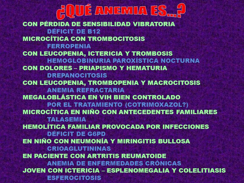Palabras Clave bcr-abl (22;9)LMC EPO normalPolicitemia Vera DacriocitosMielofibrosis CeliaquíaLinfoma T intestinal VHCLinfoplasmocítico HelicobacterMALT gástrico Dolor Óseo general CD15, CD25, CD30 Cél.Reed-Sternberg VH 8 y VIHL.