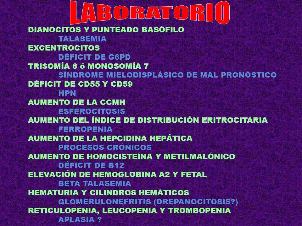 MACROCITOSIS + TÚNEL CARPO + ESTREÑIMIENTO HIPOTIROIDISMO DACRIOCITOS + DOLOR DE CADERA + AUMENTO FOSFATASA MIELOTÍSICA POR PAGET NORMOCÍTICA + DIPLOPIA + ANTICUERPOS ANTI MuSK MIASTENIA GRAVE + TIMOMA + APSR NORMOCÍTICA + QT LARGO + TETANIA + HIPOFOSFATEMIA CELIAQUÍA (DÉFICIT HIERRO + FÓLICO) ESPLENOMEGALIA + LEUCOPENIA + TROMBOPENIA + FIEBRE + HIPERGAMMAGLOBULINEMIA LEISHMANIASIS DOLOR ABDOMINAL + FIEBRE + DIARREA + MEGALOBLASTOSIS + EOSINOFILIA BOTRIOCEFALOSIS MICROCÍTICA EN PACIENTE TUBERCULOSO SIDEROBLÁSTICA POR ISONIACIDA CON ICTERICIA DURANTE LA ACTUAL EPIDEMIA DE SARAMPIÓN HEMOGLOBINURIA PAROXÍSTICA A FRÍGORE CON AUMENTO RETICULOCITOS EN PACIENTE CON CIRROSIS ACANTOCÍTICA ó POR ESPLENOMEGALIA CON HAPTOGLOBIA INDETECTABLE EN PACIENTE CON LLC AUTOINMUNE