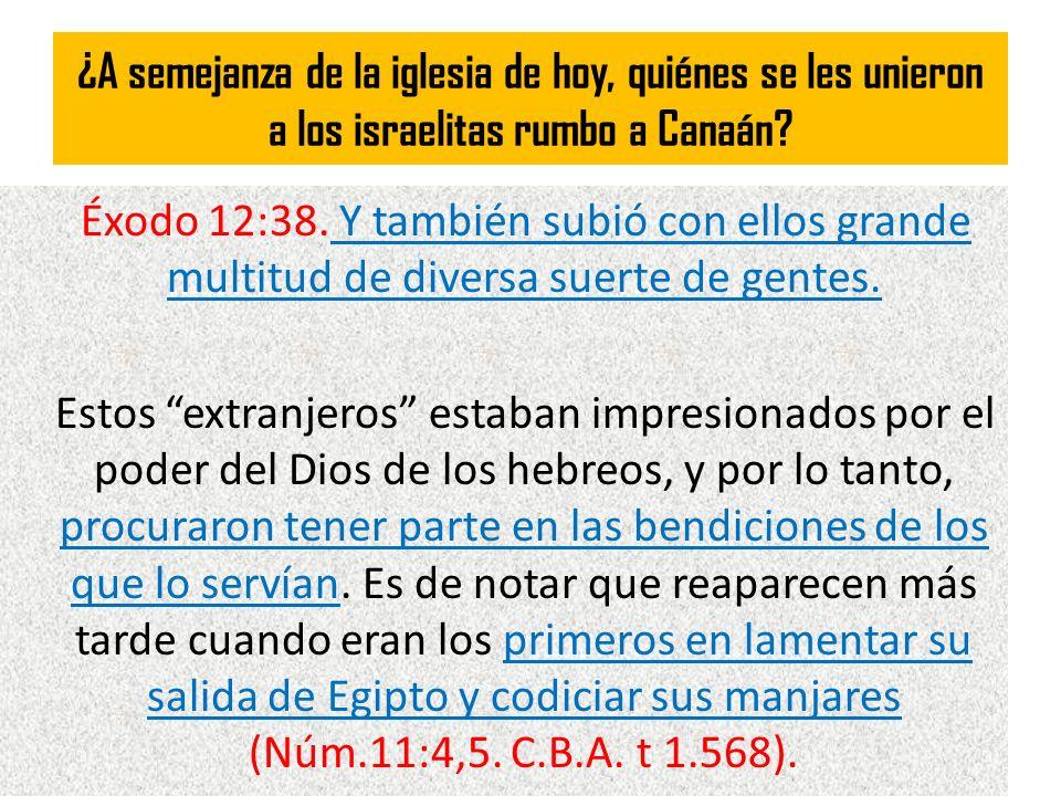 ¿A semejanza de la iglesia de hoy, quiénes se les unieron a los israelitas rumbo a Canaán? Éxodo 12:38. Y también subió con ellos grande multitud de d