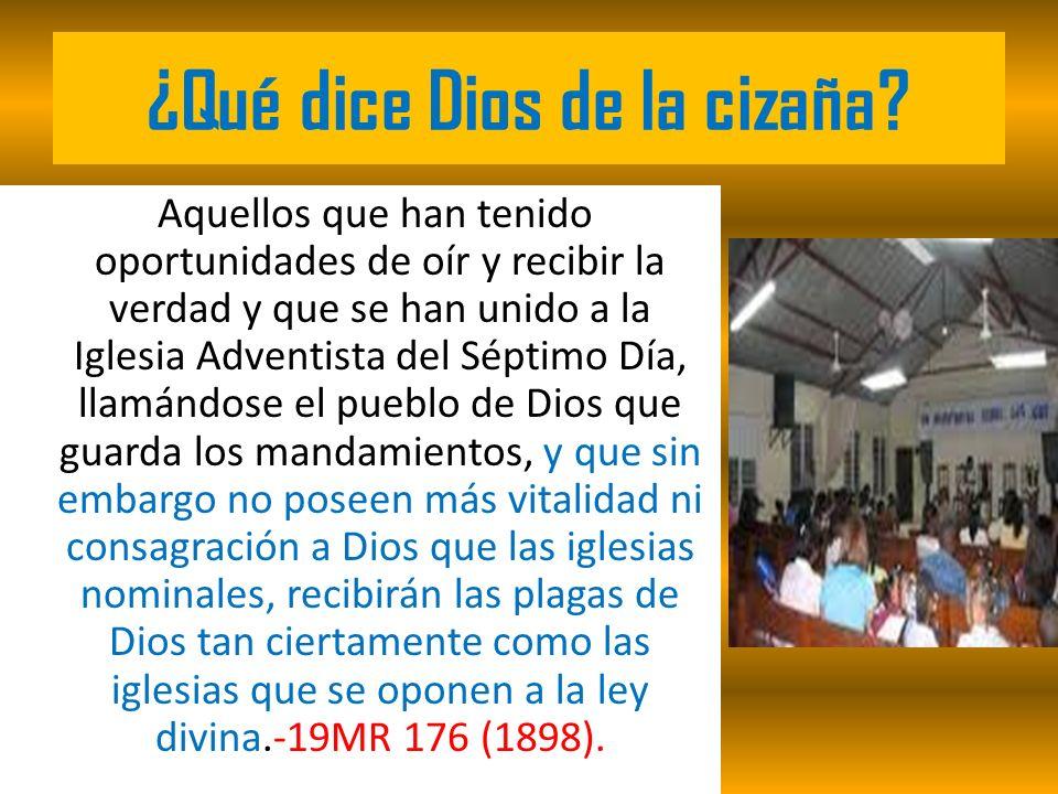 ¿Qué dice Dios de la cizaña? Aquellos que han tenido oportunidades de oír y recibir la verdad y que se han unido a la Iglesia Adventista del Séptimo D