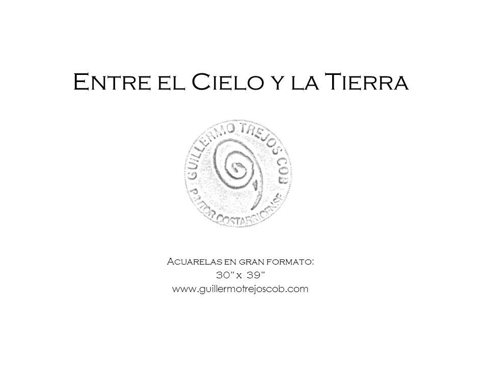 Entre el Cielo y la Tierra Acuarelas en gran formato: 30 x 39 www.guillermotrejoscob.com