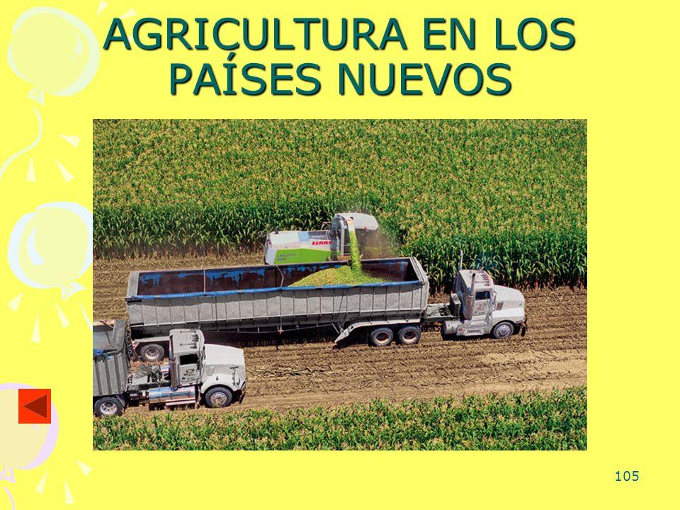 105 AGRICULTURA EN LOS PAÍSES NUEVOS