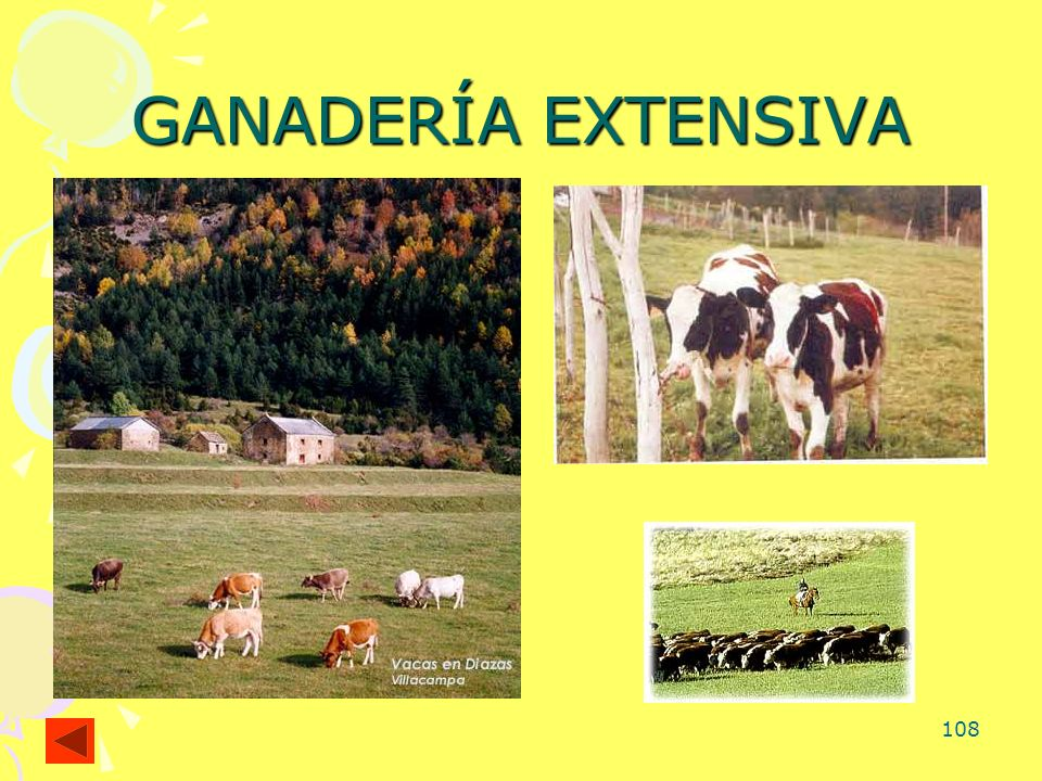 108 GANADERÍA EXTENSIVA