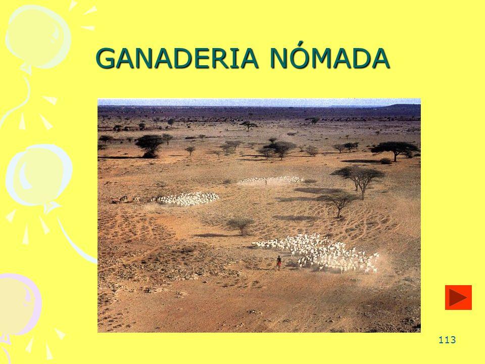 113 GANADERIA NÓMADA
