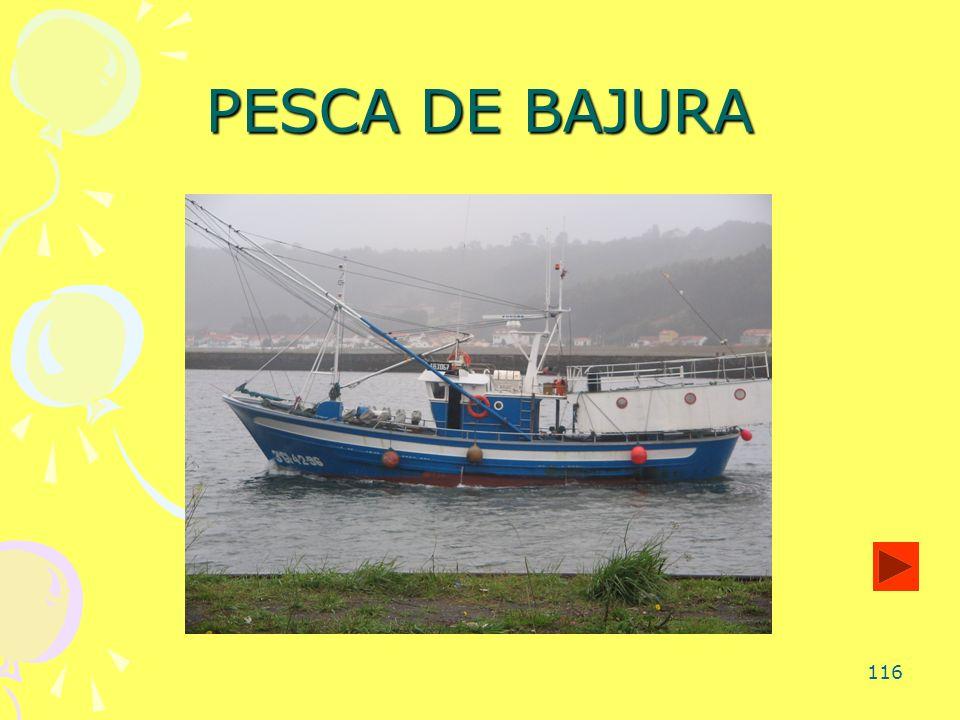 116 PESCA DE BAJURA