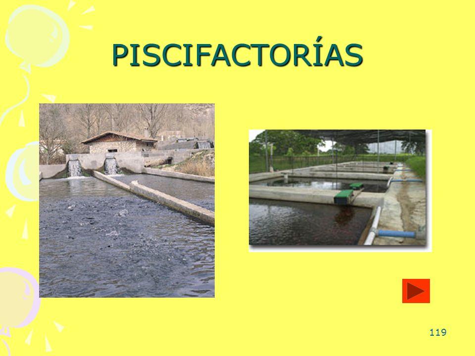119 PISCIFACTORÍAS