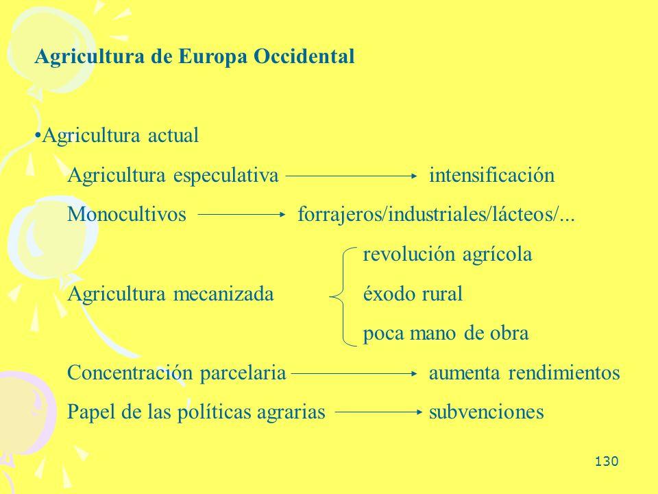 130 Agricultura de Europa Occidental Agricultura actual Agricultura especulativaintensificación Monocultivosforrajeros/industriales/lácteos/... revolu
