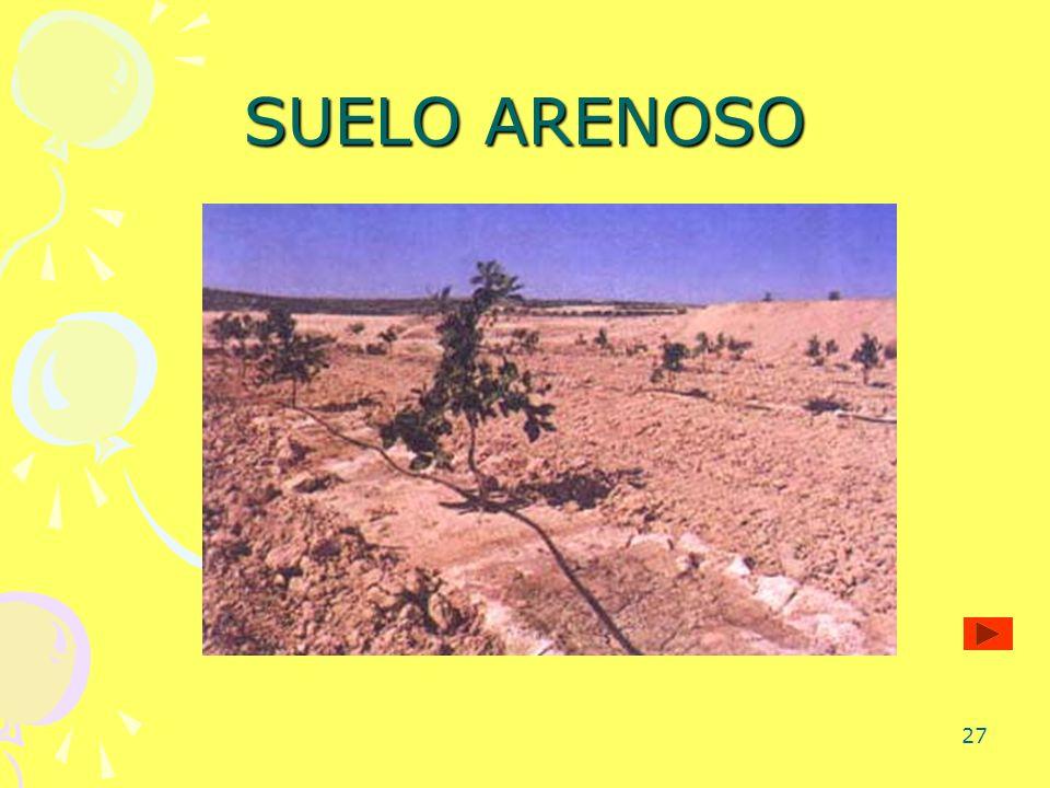27 SUELO ARENOSO