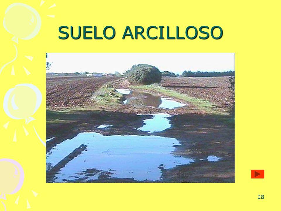 28 SUELO ARCILLOSO