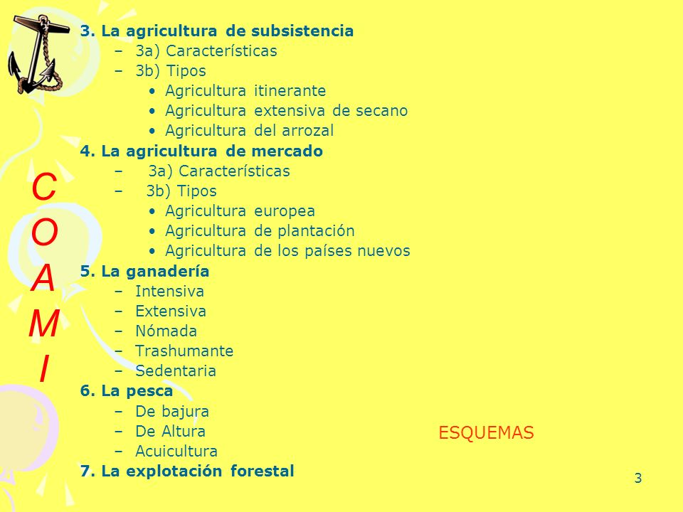 3 3. La agricultura de subsistencia –3a) Características –3b) Tipos Agricultura itinerante Agricultura extensiva de secano Agricultura del arrozal 4.