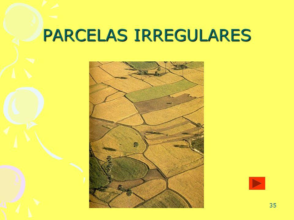 35 PARCELAS IRREGULARES