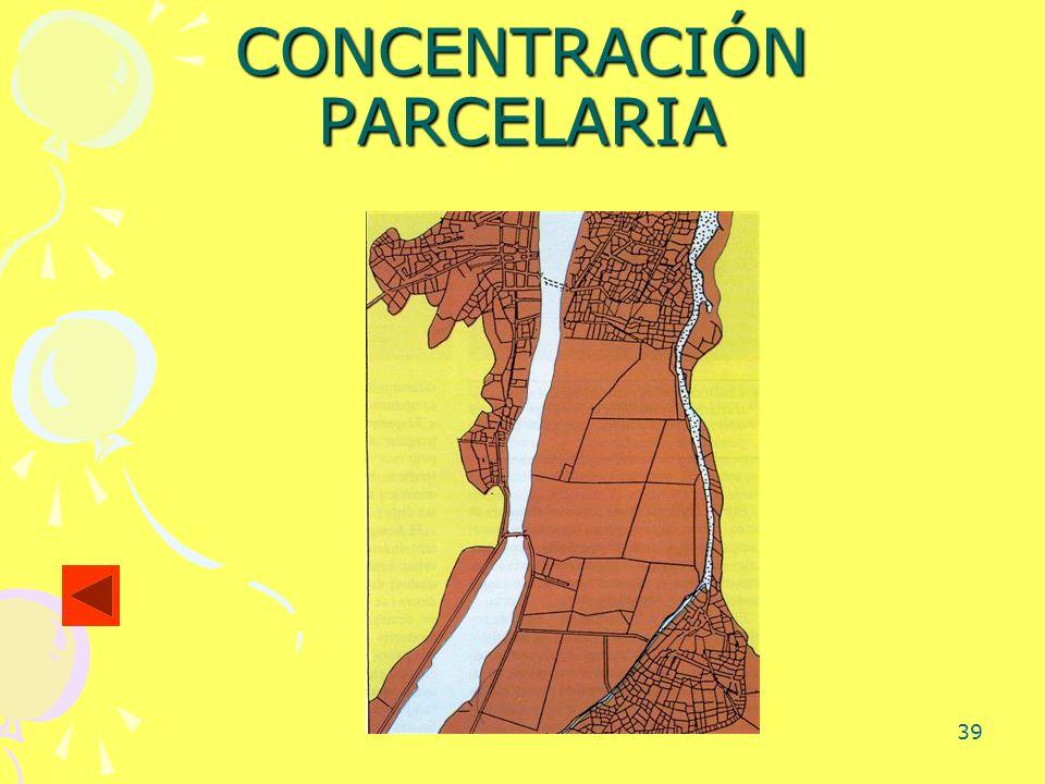 39 CONCENTRACIÓN PARCELARIA